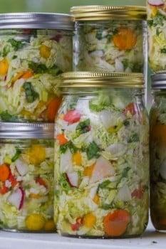 fermentado-vegetables